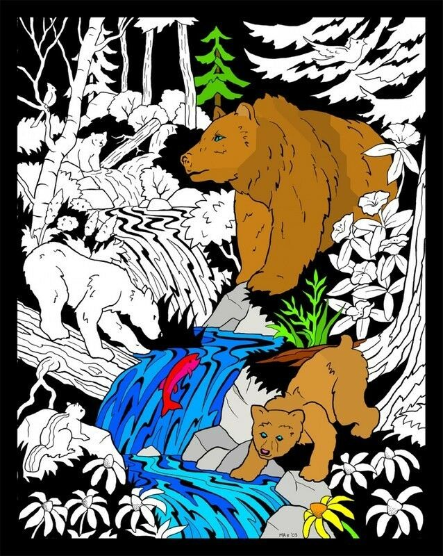 Bears - Large 16x20 Inch Fuzzy Velvet Coloring Poster