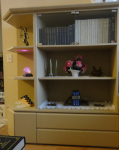 Wall-Shelving unit / Display Cabinet / Bookcase
