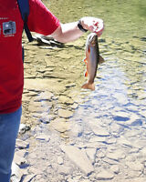 Alberta Sport fishing Guide Deals