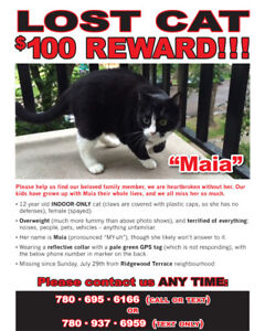 Lost Cat: REWARD - St. Albert, Ridgewood Terrace Area