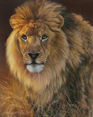 Red Fox by Joni Johnson-Godsy Poster 19x13 WILDLIFE ART PRINT Curious
