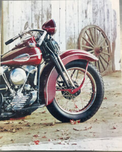 Knucklehead Canvas Print