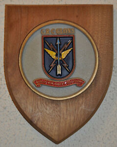 Wooden Crest/Shield Wall Plaques Kingston Kingston Area image 2
