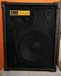 Accugroove Latte Active FRFR Speaker Cabinet