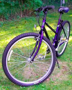 *Norco* Mountain Bike