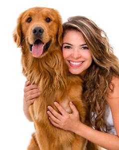 Animal (Pet) and Horse Reiki