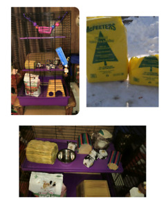Rat cage and supplies