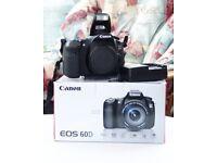 Canon eos 60d DSLR body only