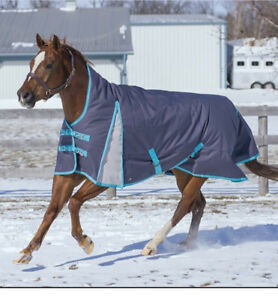New Horse blankets and accessories