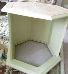Refinished Hexagon End Table AND Trendy Pet Bed--So LOVELY!