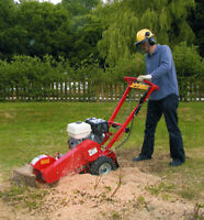 Stump grinding and small tree removal