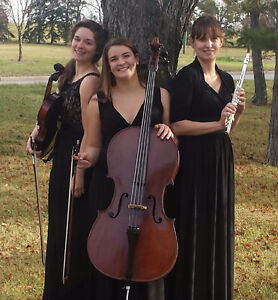 Wedding Musicians For Hire: Exquisite Melodies