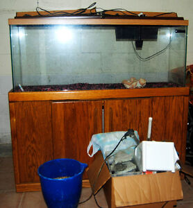 55 Gallon Aquarium with Stand and accessories