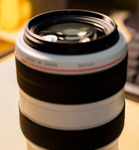 Canon 70-300mm F4-5.6 IS L lens Kitchener / Waterloo Kitchener Area image 2