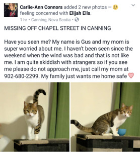 Missing in the Canning area!
