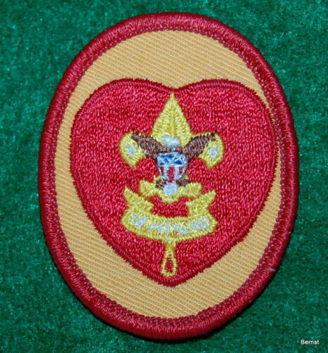 BOY SCOUT RANK PATCH - LIFE
