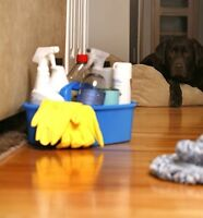 Experienced  Cleaning Lady Seeking Clients!