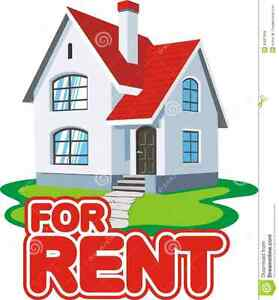 Looking for a rental in the Amherst area.