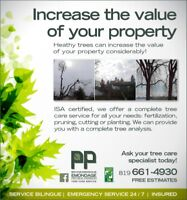 Proffesional/Certified Tree Care&Tree Removal