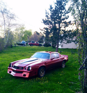 Z28.. MUST SELL... BUYING HOUSE....