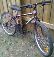 "The ""Raleigh HotFoot Mountain Bike"" for sale"