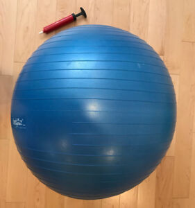 Exercise Ball and pump
