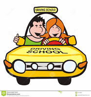 DRIVING LESSONS WITH EXPERIENCED DRIVING INSTRUCTOR