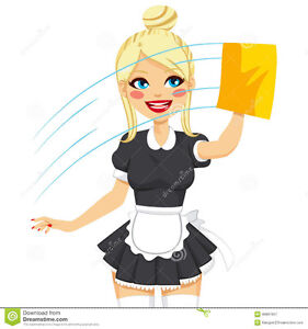 De Maid cleaning