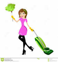 Experienced Residential Cleaner taking new customers