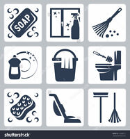Reliable Experienced Housecleaner