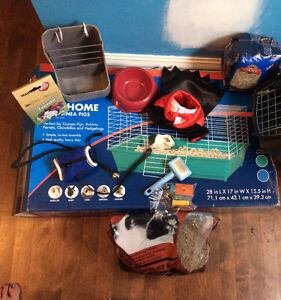 Cage, Feeder, Harness, Costume and More