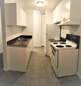 Spacious One Bedroom Available February