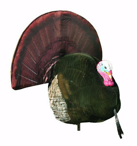 Turkey Decoy