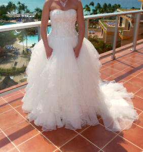 Wedding Dress- bustle added & professionally cleaned/preserved