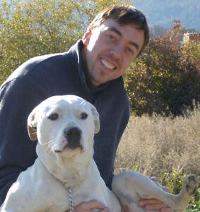 Dog Walking /Dog Psychology Service
