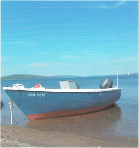 Home made wood / fibre glass boat fishing boat