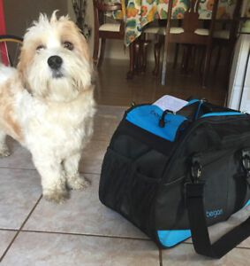 Dogs comfort animal carrier
