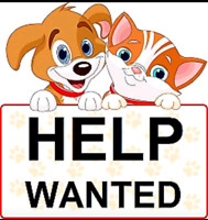Doggie daycare kennel attendants and groomers wanted