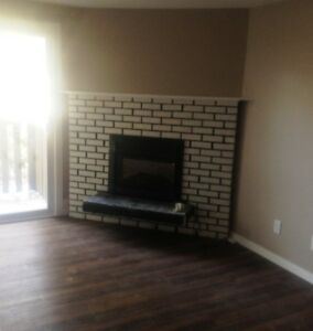 MUST SEE-Completely Renovated 3 Bedroom 1300 Sq Ft $1145/month