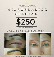Microblading Special!