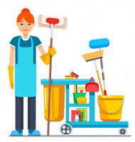 One-time pro housecleaning 4 hrs/$100