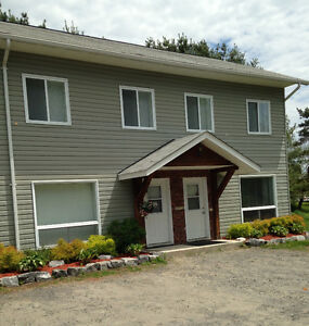 Large 2 Bedroom Townhouse Suite (ICF Construction - In-Town!)