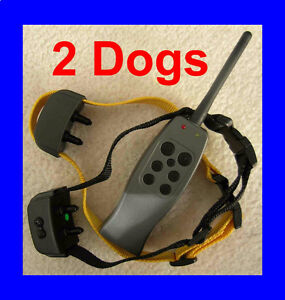 Rechargeable Remote Training Shock Vibration Collar for 2 Dogs
