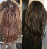 Hair styling (Blow-outs, curls/waves) + Wash & Treatment $40