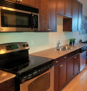 FANTASTIC studio fully furnished condo in RED Condos Uptown!!