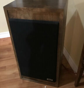 I BUY BLOWN SPEAKERS OR FOAM DAMAGED SPEAKERS
