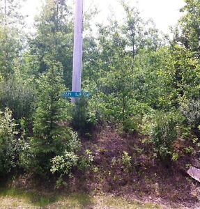 HIGHWAY 43 FRONTAGE! LAND for SALE!