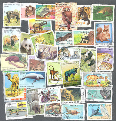 Wild life-Nature 100 all different collection mainly mammals-few birds-reptiles