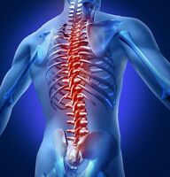 Chiropractic Receptionist/part time