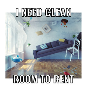 Looking for clean room to rent